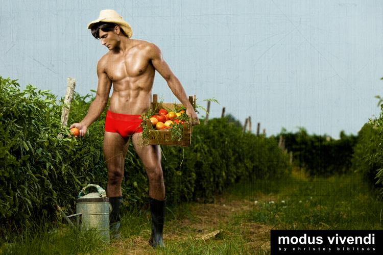 modus vivendi underwear farmer line 02